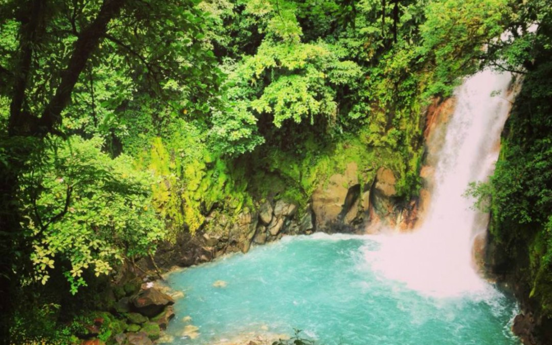 What's Cool in Costa Rica