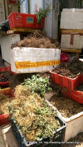 HK : 一次走完三座法定古蹟 @ 大埔墟 – 漂泊中的魚