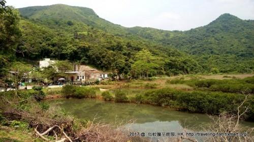 HK : 好行好食的半天 – 烏蛟騰 – 三椏村 – 荔枝窩 – 鹿頸 – 漂泊中的魚