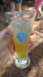 Apple-Ginger Moonshine