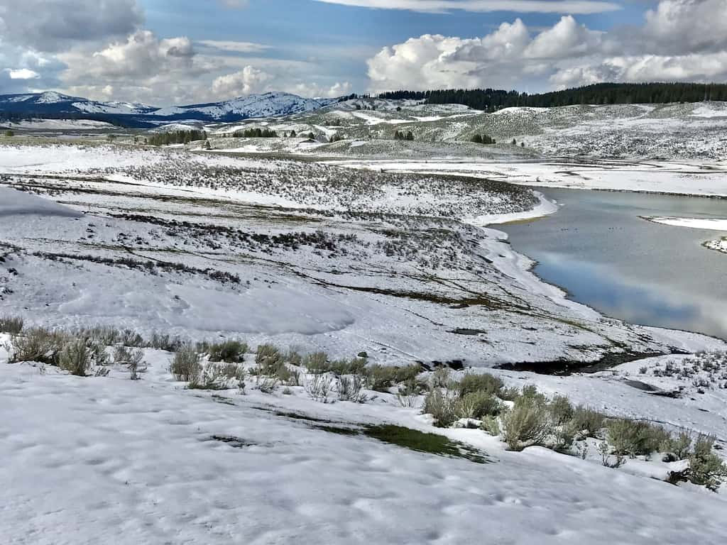 Yellowstone National Park blanketed in snow