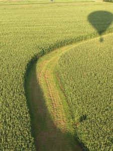 Crop watching from above