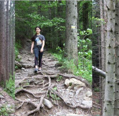 הרי הטטרה בפולין: המלצה לטיול הליכה לכל המשפחה