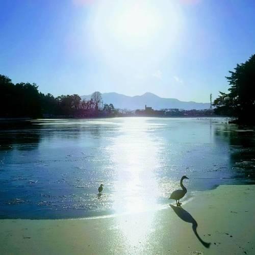 盛岡市、冬の高松公園で絶景が見られる!