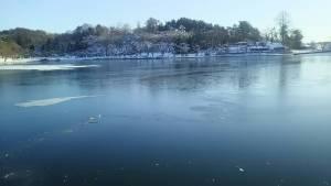 盛岡市の冬の高松の池、綺麗な景色です