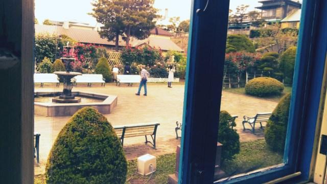 ティールームヴィクトリアンローズからの外の風景