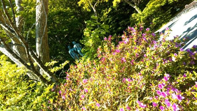 十和田湖の「乙女の像」と花