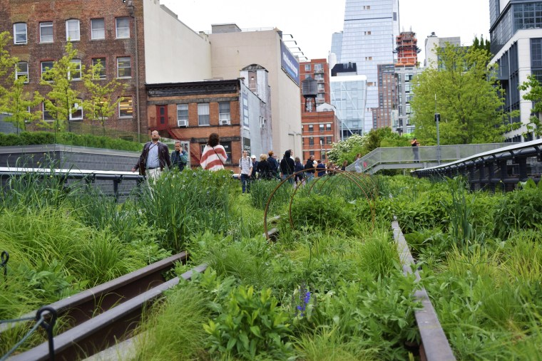 A shot on the High Line in the neighborhood of Chelsea in NYC.