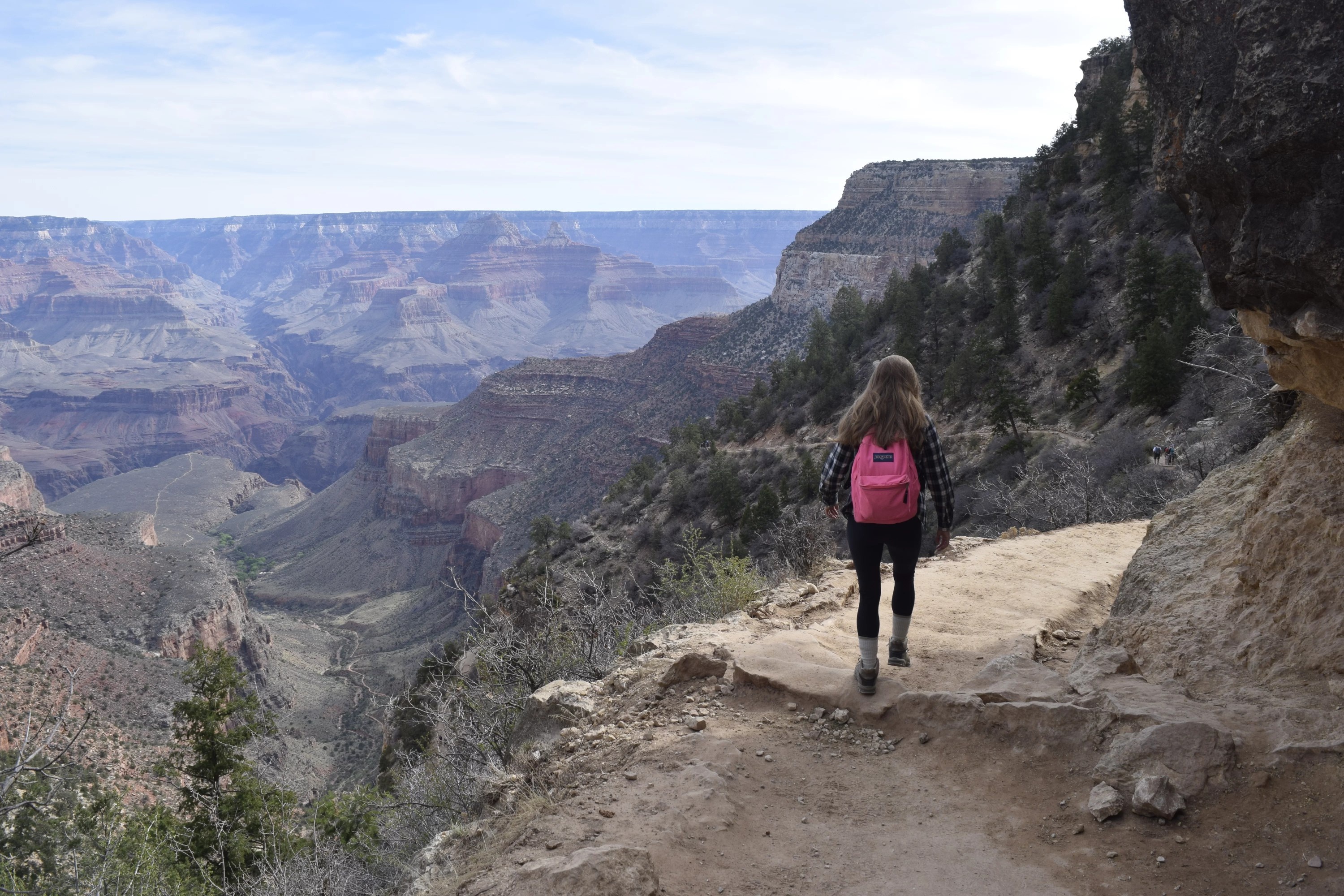 Taken on the Bright Angel Trail in the Grand Canyon.