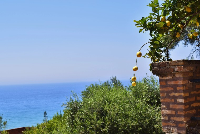 View from our balcony at the Pink Palace in Agios Gordios, Corfu, Greece.
