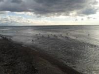 Watch the Darkening Skies on the water