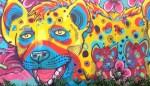 Medelin Street Art Series, Part 4