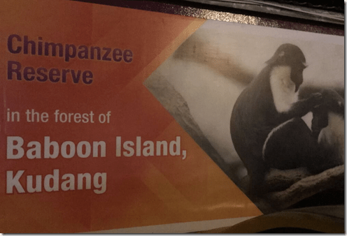 Baboon Island