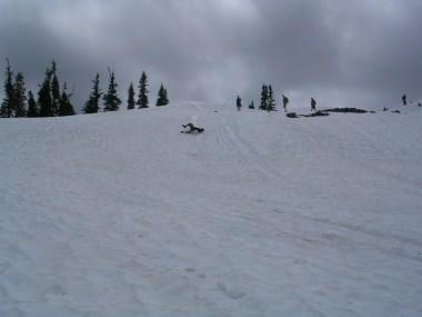 Mt. Rainier (230)