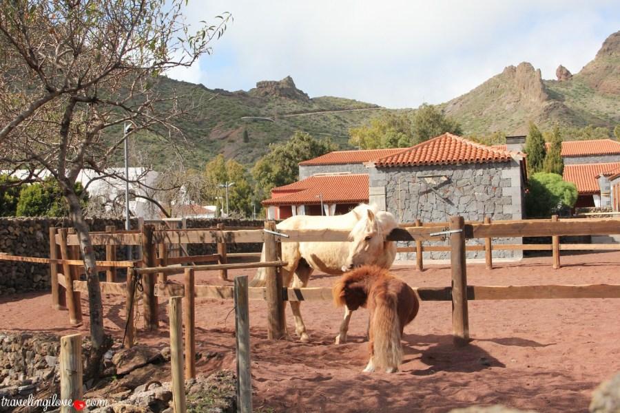 Santiago del Teide (8b)