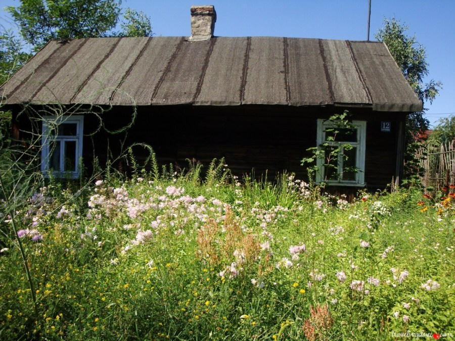 Old house and the meadow.