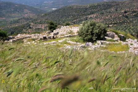 Mycenae (1)