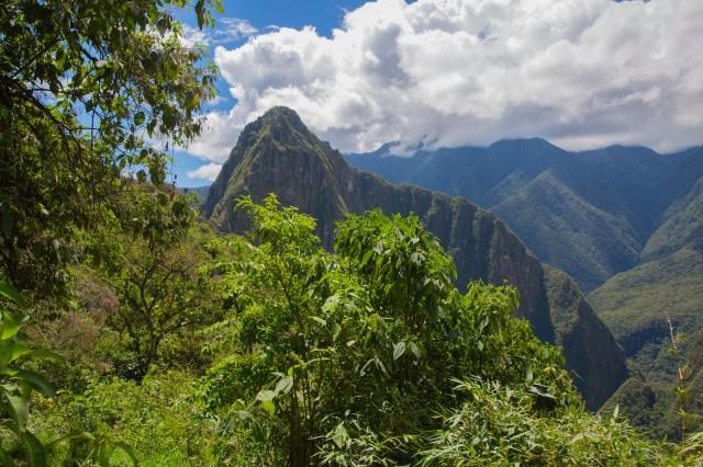 Machu Picchu from hike