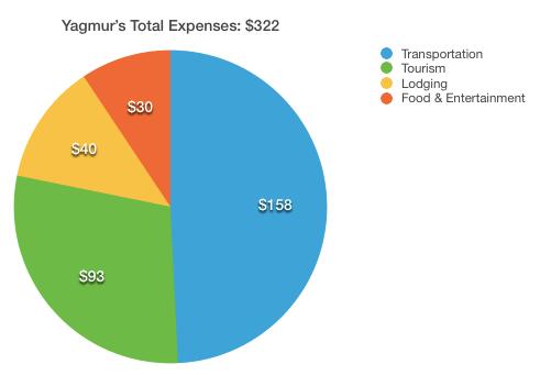 Yagmurs Total Cost Ulaanbaatar