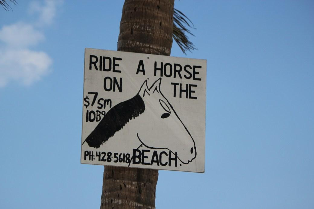 Ride A Horse on the Beach; Nassau, Bahamas; 2011