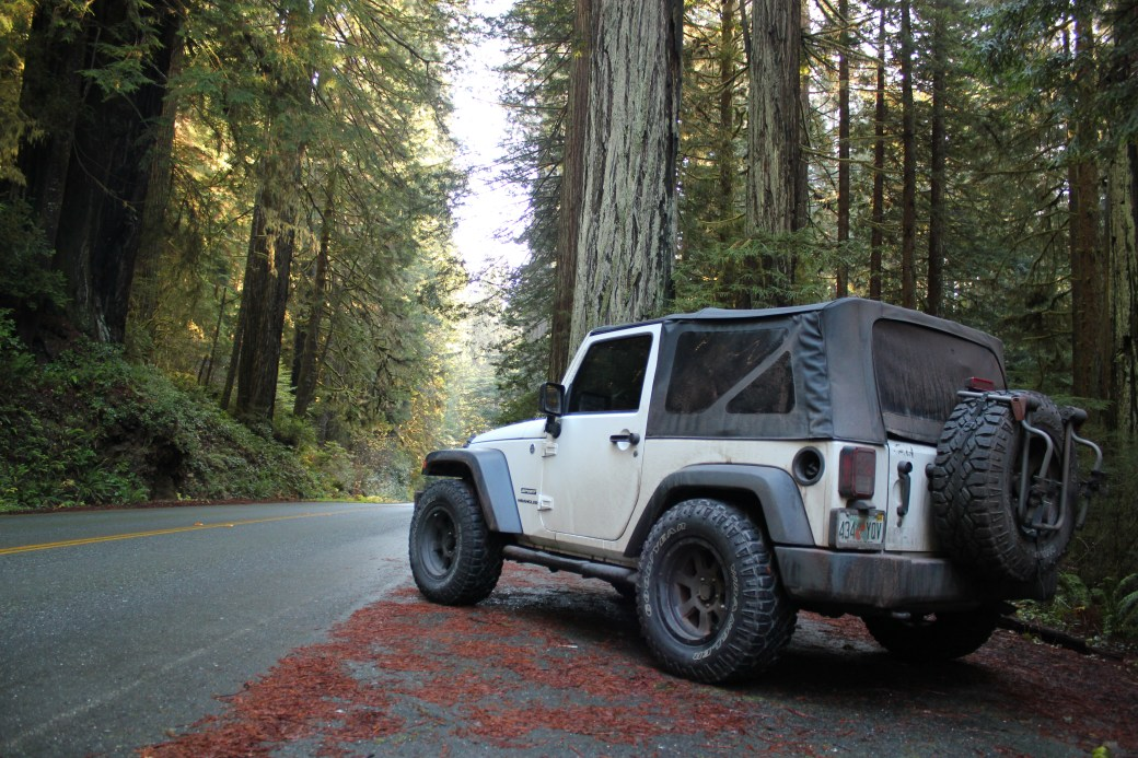 My Jeep Wrangler aka Oakley; Redwood National Park, California; 2013