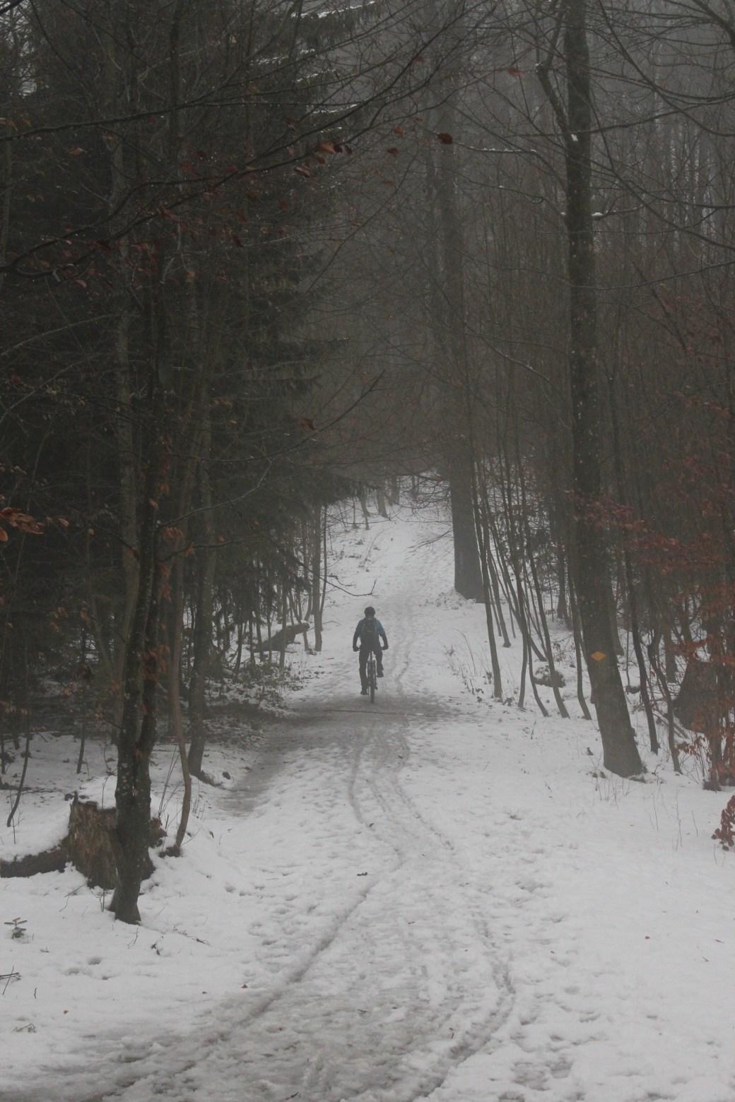 Snow Biker Zurich, Switzerland; 2011