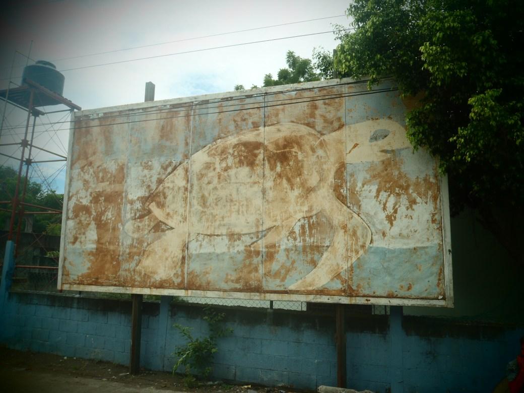 Sea Turtle Poster; Monterrico, Guatemala; 2013