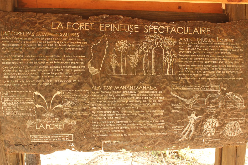 Flora and Fauna Map of Arboretum d'Antsokay; Toliara, Republic of Madagascar; 2013