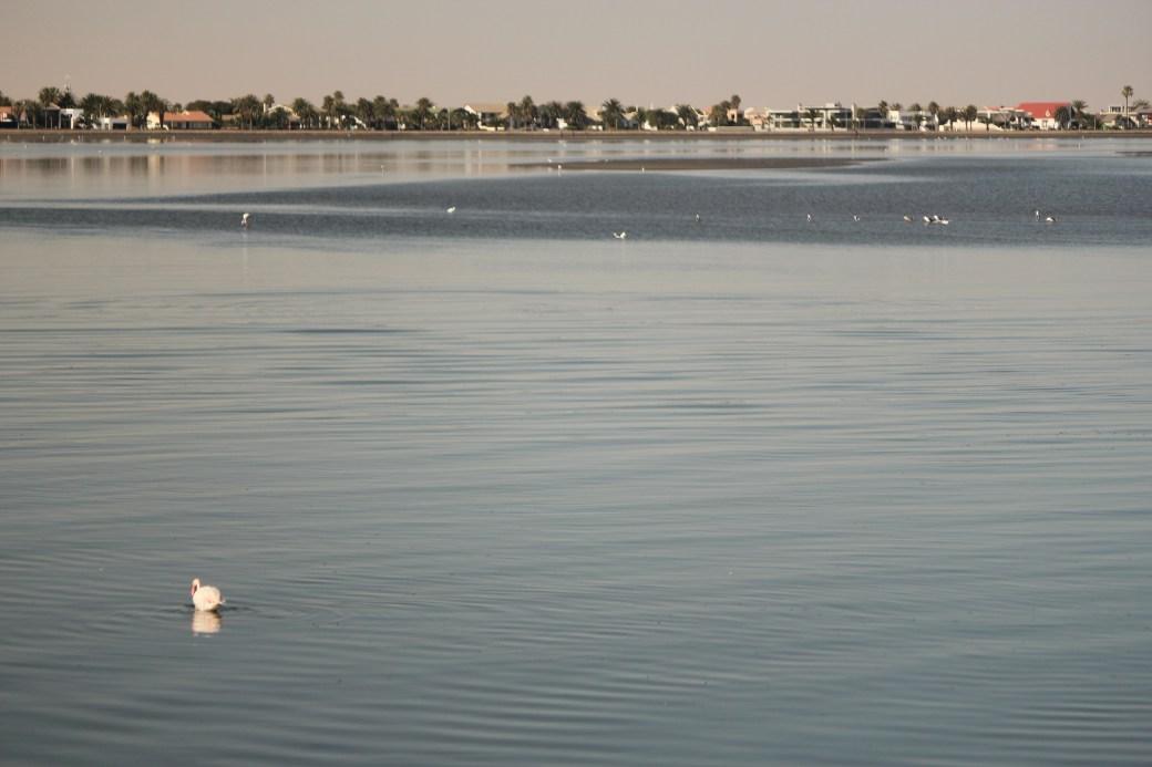 Peace; Walvis Bay, Namibia; 2013