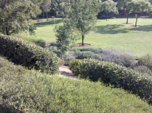 Wingspan Park, Aliso Viejo CA