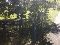 Rotary Club Walk Coshocton