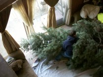 Christmas Tree setup 18 feet Griswold National Lampoon Christmas Vacation