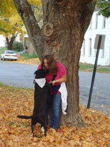 dog friendly places Coshocton Ohio Baxter blog