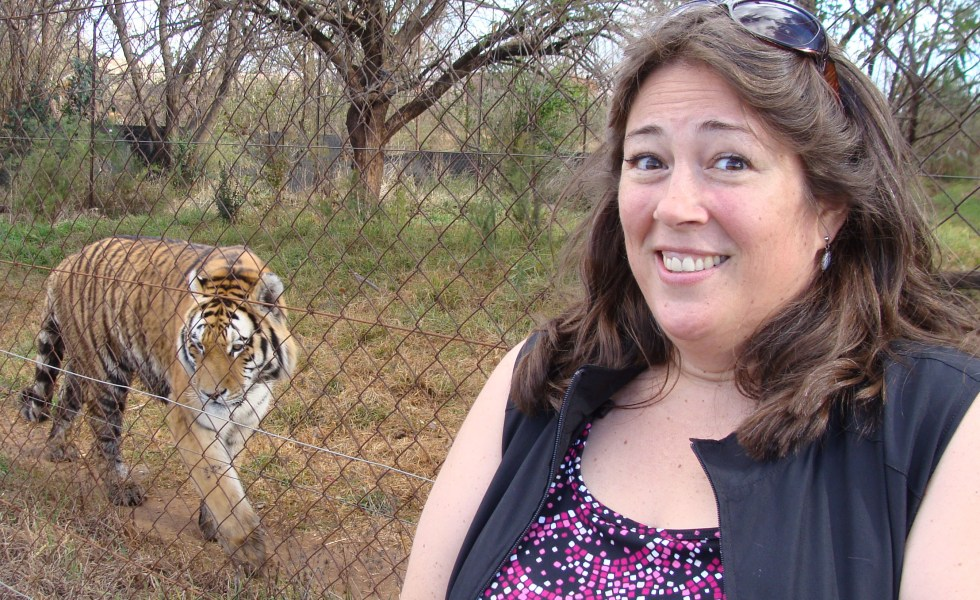 There are no native African tigers