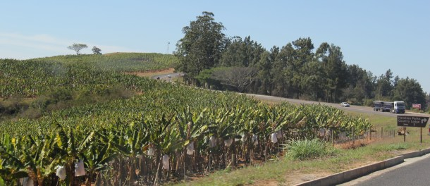 expat life Pretoria Africa travel Kruger National Park scenic drives