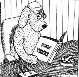 Old Dog New Tricks2