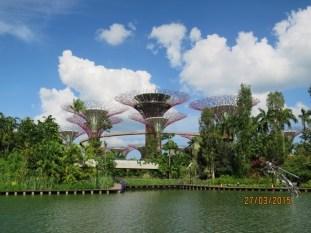 Dragonfly island1