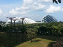 View from MBS bridge3