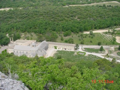 abbaye-senanque01