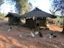 Akha house