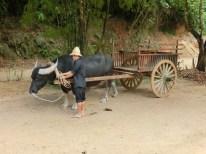 Transporting