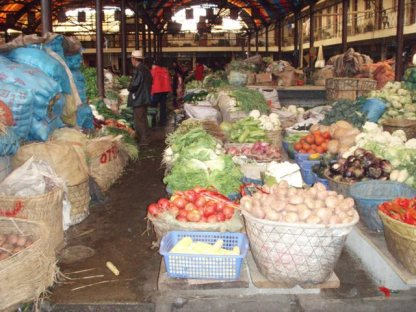 Fruits and veg available