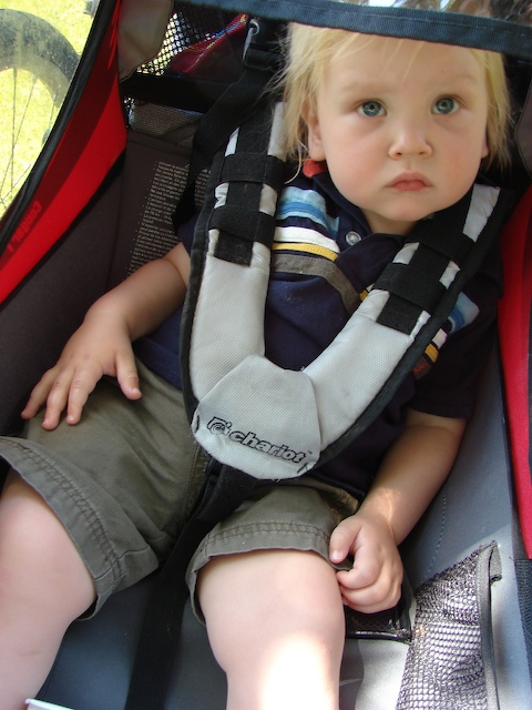 Anders in the stroller