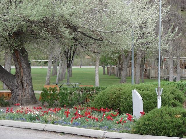 Sac Park