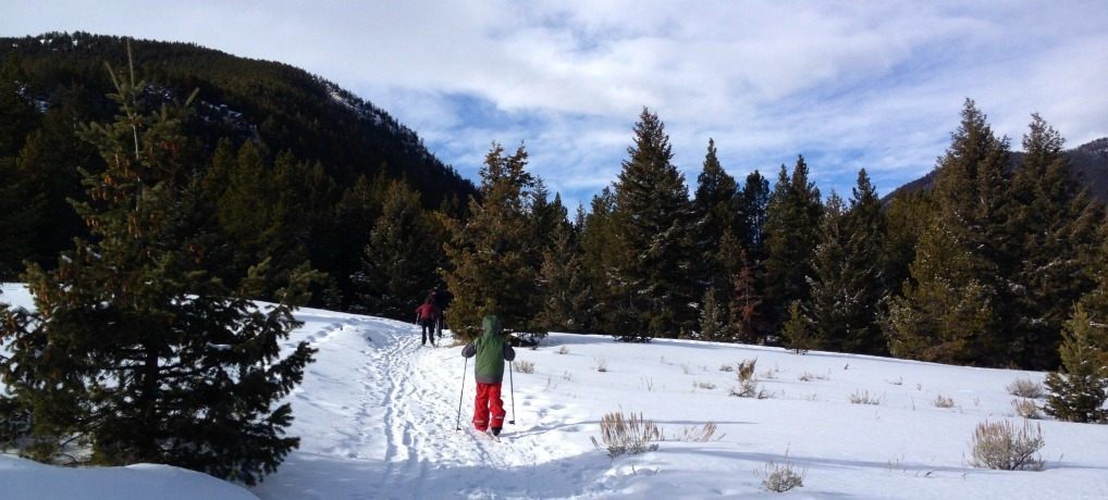 Red Lodge Nordic Cross-country skiing