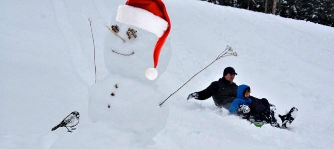 Snow sports, so fun