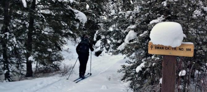 {Gallatin Canyon} Swan Creek Ski