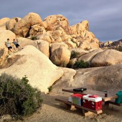 Kids Reading Chair Traditional Dining Room Chairs Joshua Tree National Park Camping & Playing - Travelingmel