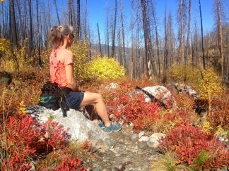 Hike up Deep Creek in the Absarokas in fall