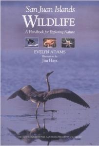 San Juan Islands Wildlife: A Handbook for Exploring Nature By Evelyn Adams
